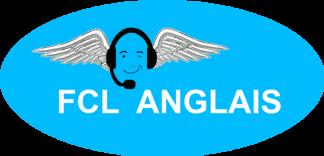 Cours préparation entraînement anglais de la radiotéléphonie internationale niveau 4 OACI niveau 5 OACI niveau 6 OACI formation aéronautique communications pilote contrôleur